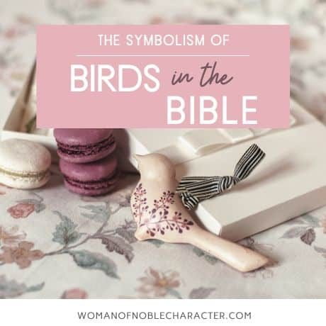 symbolism of birds in the Bible